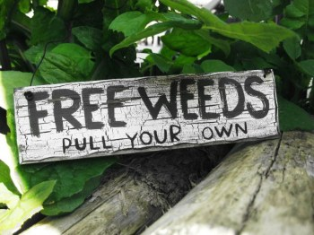 Free_Weeds_by_evil_monkey3