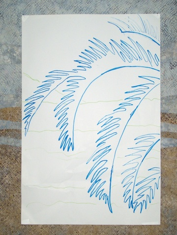 Palms5