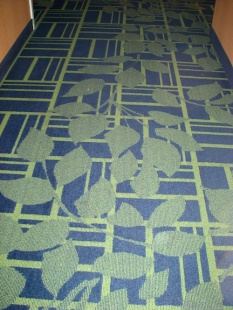 TN hotel carpet 2