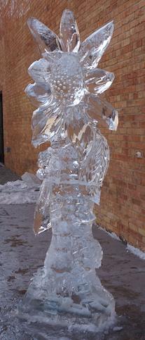 2015 Ice Fest 2