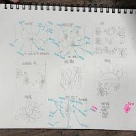 DB design 9